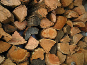 Cheminee fireplaces firewood supplier